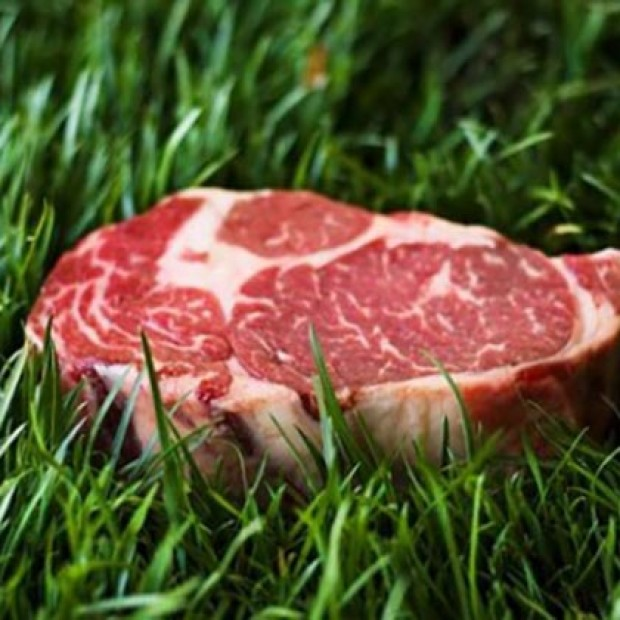 Pasture to Plate Meats